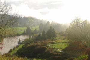 Whanganui im Morgennebel